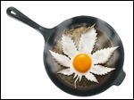 Television PSAs during the 1980s told us that 'your brain on drugs' is like an egg frying in a skillet.